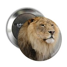 """Lion Lovers 2.25"""" Button"""