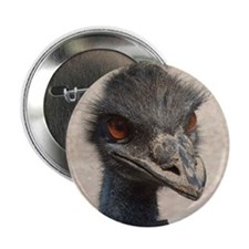 """Angry Ostrich 2.25"""" Button"""