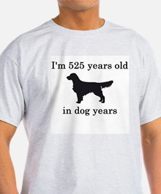 75 birthday dog years golden retriever T-Shirt
