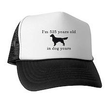 75 birthday dog years golden retriever 2 Trucker Hat