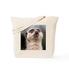 Alert Meerkat 5x7 Rug Tote Bag