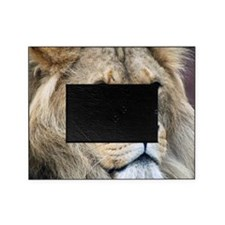 Lion Throw Pillow Picture Frame