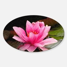 Pink Water Lily Decal