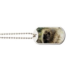 Prickly Subject Dog Tags