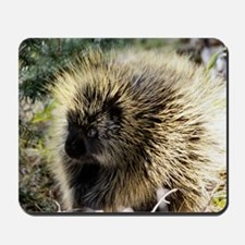 Prickly Subject Mousepad