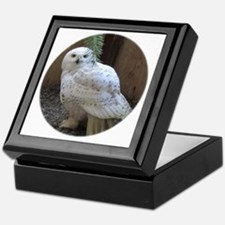 Snowy Owl Round Keepsake Box