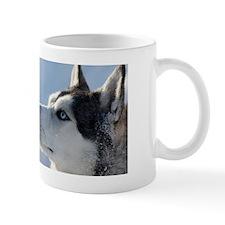 main banner Mug