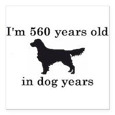 80 birthday dog years golden retriever 2 Square Ca
