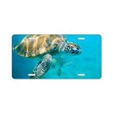 Close up of two sea turtles Aluminum License Plate