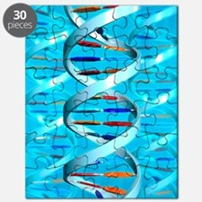 DNA helices Puzzle