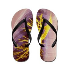 Lung bronchioles, X-ray Flip Flops