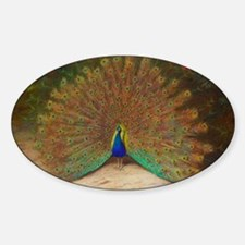 .Vintage Art of a Peacock Sticker (Oval)