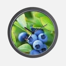 Blueberries growing on a shrub Wall Clock