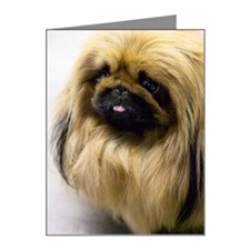 Closeup of pekingese puppies Note Cards (Pk of 10)