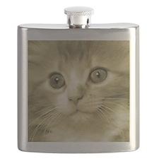 Huge Kitten Face Flask