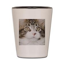 Huge Kitty Face Shot Glass