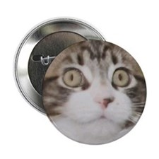 "Huge Kitty Face 2.25"" Button"