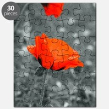 Red Poppy Puzzle