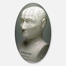 Phrenology bust Decal