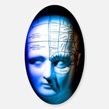 Phrenology model Decal