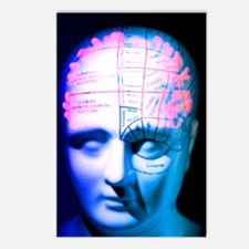 Phrenology model Postcards (Package of 8)