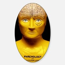 Phrenology bust Decal