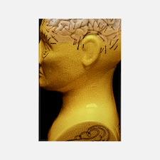 Phrenology bust Rectangle Magnet