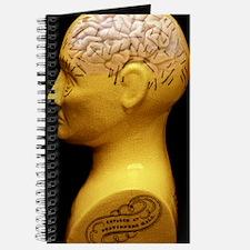 Phrenology bust Journal