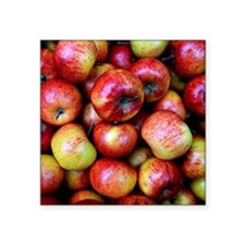 """Red Apples Square Sticker 3"""" x 3"""""""