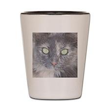 Green Eyed Kitty Shot Glass