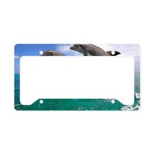Dolphin jumping in unison, Ho License Plate Holder