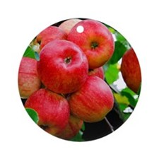 Red Apples on Tree Round Ornament