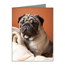 Dog on top of laundry Note Cards (Pk of 20)