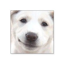 """Smiling Puppy Face Square Sticker 3"""" x 3"""""""