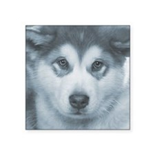 "Husky Puppy Face Square Sticker 3"" x 3"""
