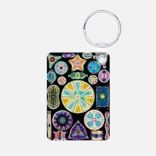 Art of Diatom algae (from  Keychains