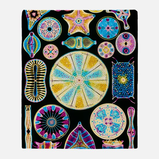 Art of Diatom algae (from Ernst Haec Throw Blanket