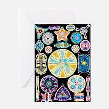 Art of Diatom algae (from Ernst Haec Greeting Card