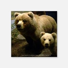 "Momma Bear and Cub (Mousepa Square Sticker 3"" x 3"""