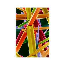 Caffeine crystals, SEM Rectangle Magnet