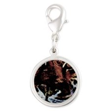 Cats Silver Round Charm