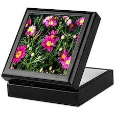 pink daisies Keepsake Box