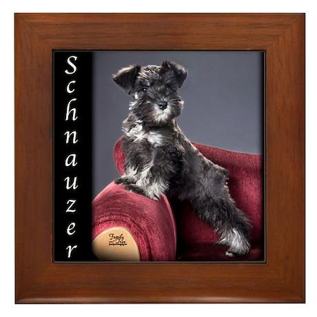 Schnauzer Puppy Framed Tile
