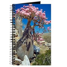 Desert rose tree Journal