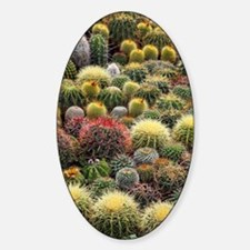 Cacti Sticker (Oval)