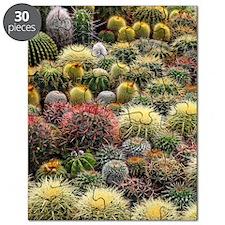 Cacti Puzzle