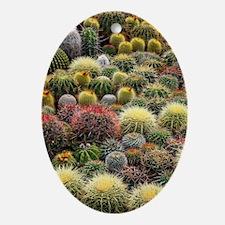 Cacti Oval Ornament