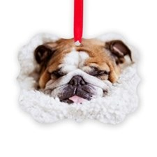 English bulldog sleeping in cute  Ornament