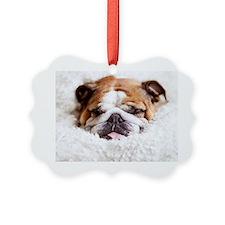 English bulldog sleeping in cute  Picture Ornament