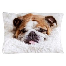 English bulldog sleeping in cute and f Pillow Case